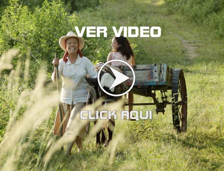 clik aqui trailer